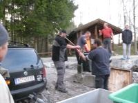 Zander u. Karpfenbesatz 2010